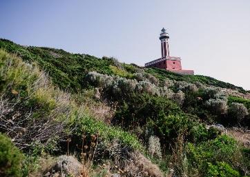 Amazing Lighthouse in Capri