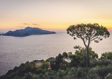 Get Married in Sorrento at The Boutique Hotel